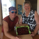Cherries Mudgee 2017